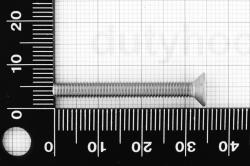M4x35 Flat Socket Head Cap Screw DIN 7991, stainless steel AISI 316